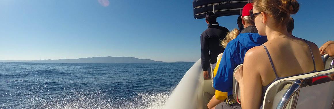 Blue Cave and Hvar Tour from Split