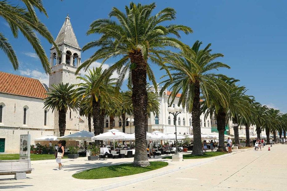Palm trees on Trogir Promenade