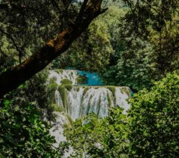 lush green nature of Krka national park