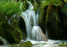 natureofplitvicenationalpark