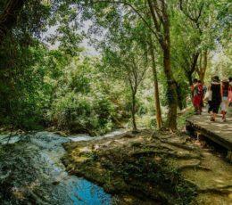 trail by th stream