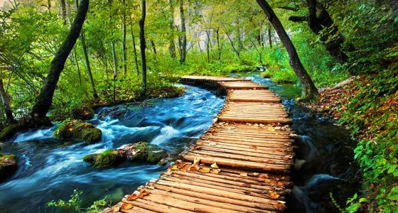 wooden trail through the woods in Plitvice