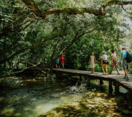 wooden trail crossing the stream of Krka river