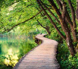 woodentrial-plitvicenationalpark