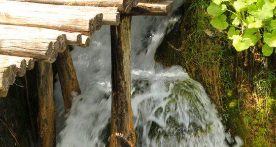 PlitviceLakesTourfromSplit-beautifulwoodentrail