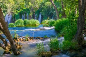 Nature of Kravice