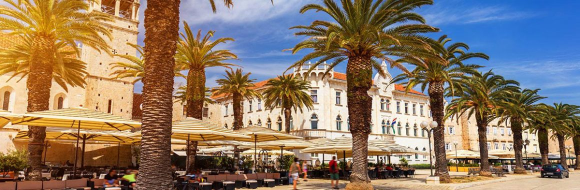 Trogir-Promenade-palm-trees