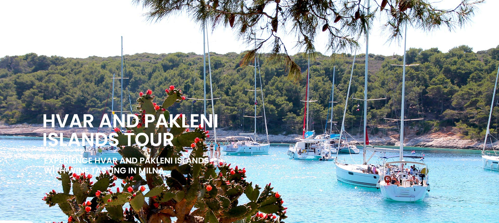 Private tour to Hvar and Pakleni islands
